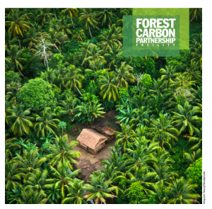 Forest-Carbon
